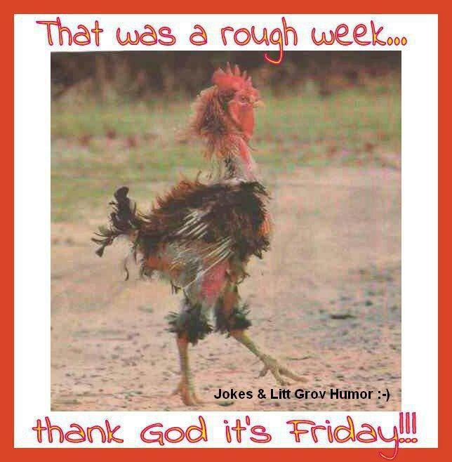 cb48014ff974ed1de864ceabd3e3ee36--thank-goodness-its-friday-thank-god-its-friday-quotes